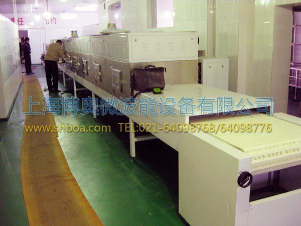 微波干燥设备建模的应用